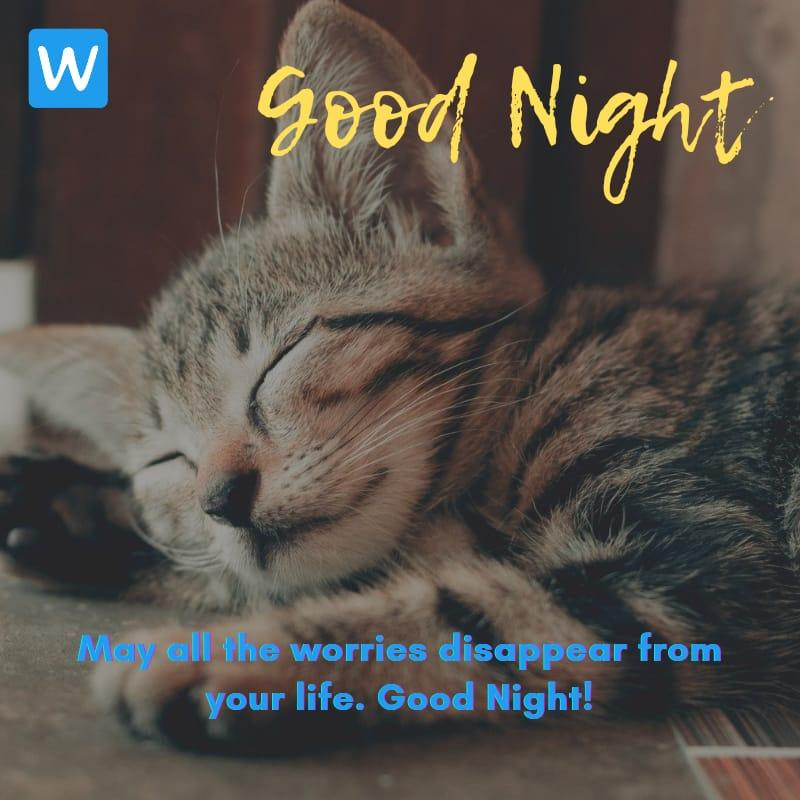 Good Night SMS Wishes Messages Images Pic in English 7-compressed