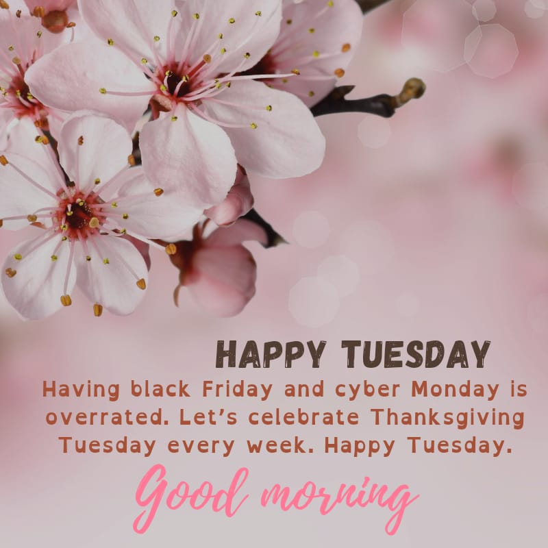 Tuesday blessings Quotes and Images 10