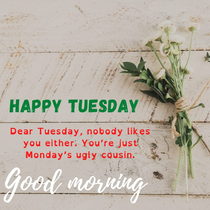Tuesday blessings Quotes and Images 2