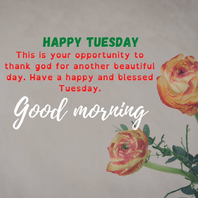 Tuesday blessings Quotes and Images 3