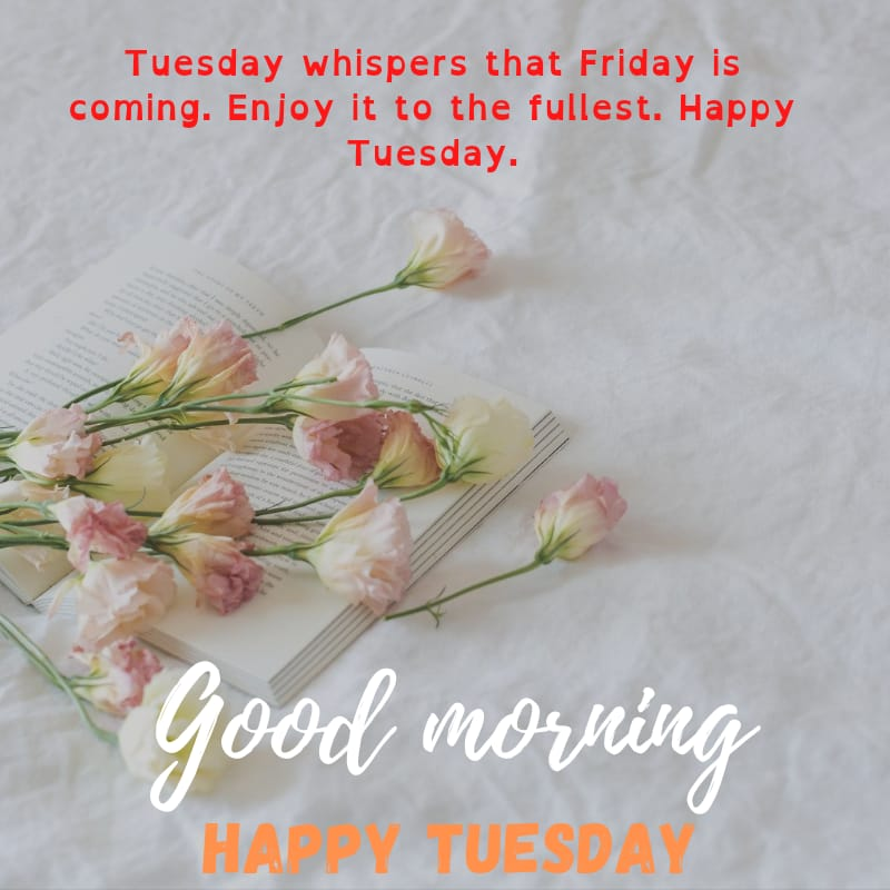 Tuesday blessings Quotes and Images 4