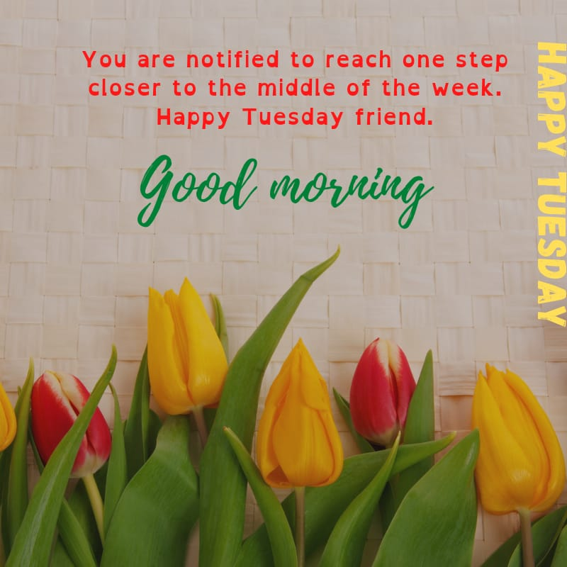 Tuesday blessings Quotes and Images 6