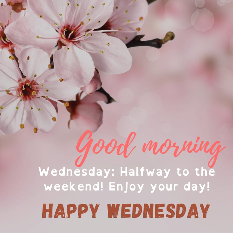 Wednesday blessings Images and Quotes 3
