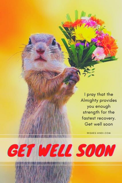 Get Well Soon images 1